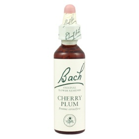 6 Cherry Plum 20ml (Nelsons)